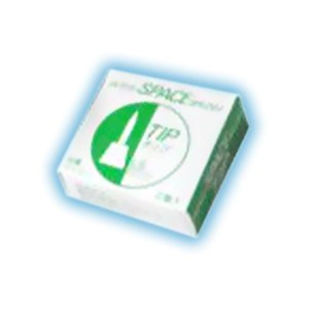 気分が悪いクラス灌漑インタースペース ・ ブラシ 専用 替えブラシ 2個入 ソフト S