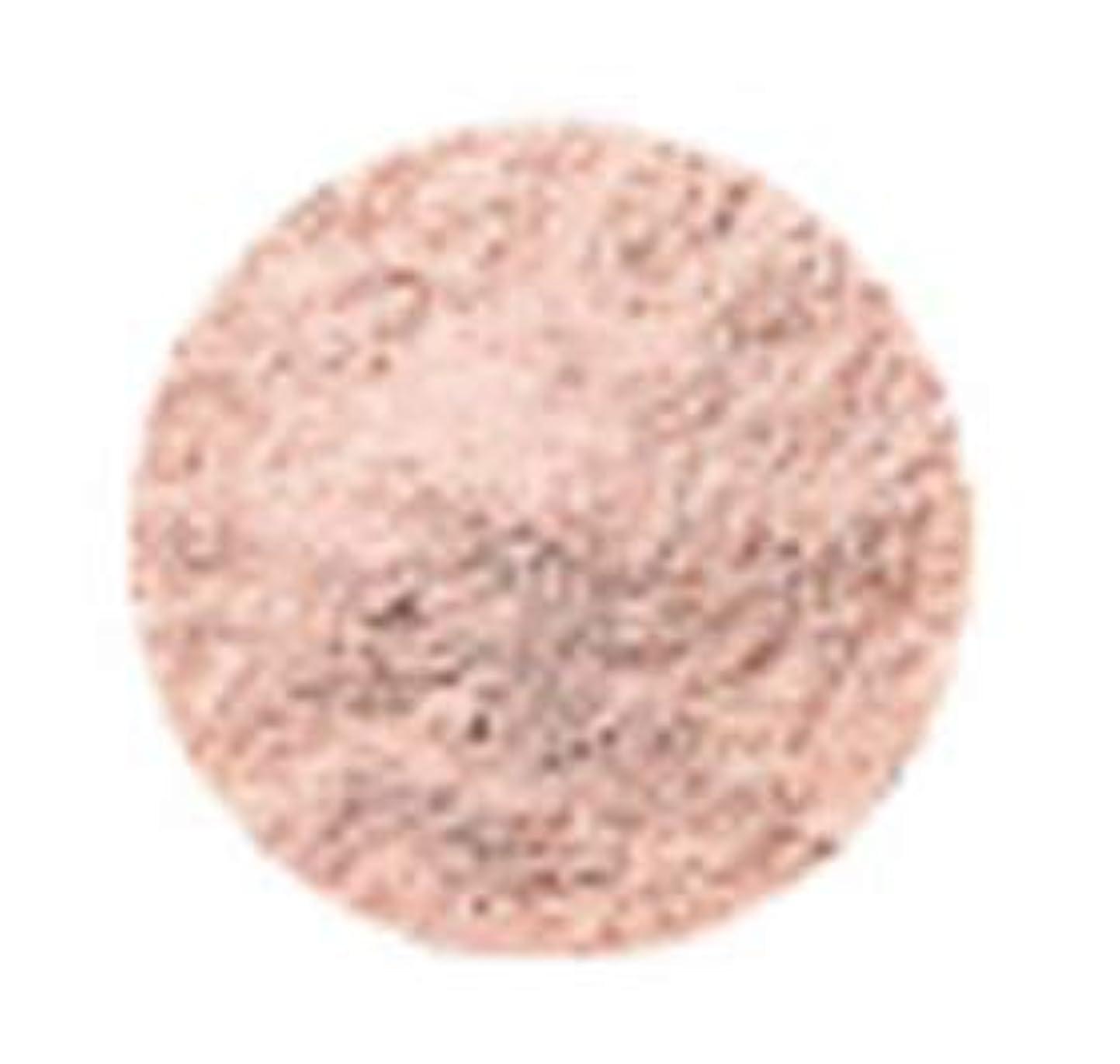 小数オフ運ぶオリリー エクステイジルースパウダー ピンク(リフィル)ケース別売(40g)