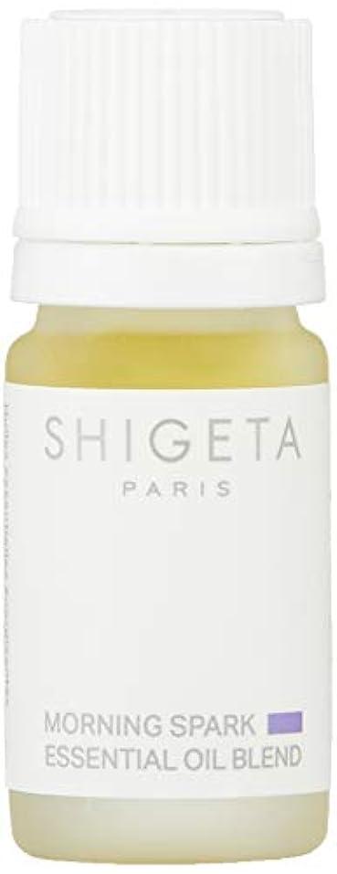 論争凍る左SHIGETA(シゲタ) モーニングスパーク 5ml