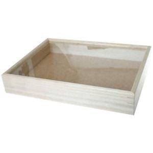 インロー硝子蓋式標本箱 (桐製コルク板敷) 大型