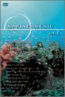 MARINE&MUSIC VOL.3「マイ・ハート・ウィル・ゴーン」 [DVD]