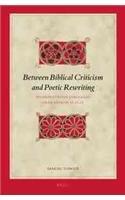 Between Biblical Criticism and Poetic Rewriting: Interpretative Struggles over Genesis 32:22-32 (Biblical Interpretation Series)