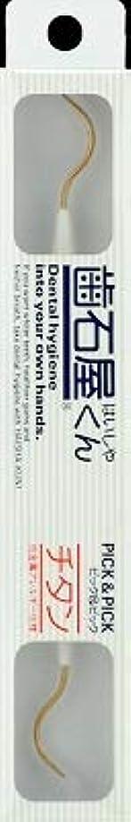 高い宝権限【まとめ買い】歯石屋くん ピック&ピックチタン仕様 ×6個