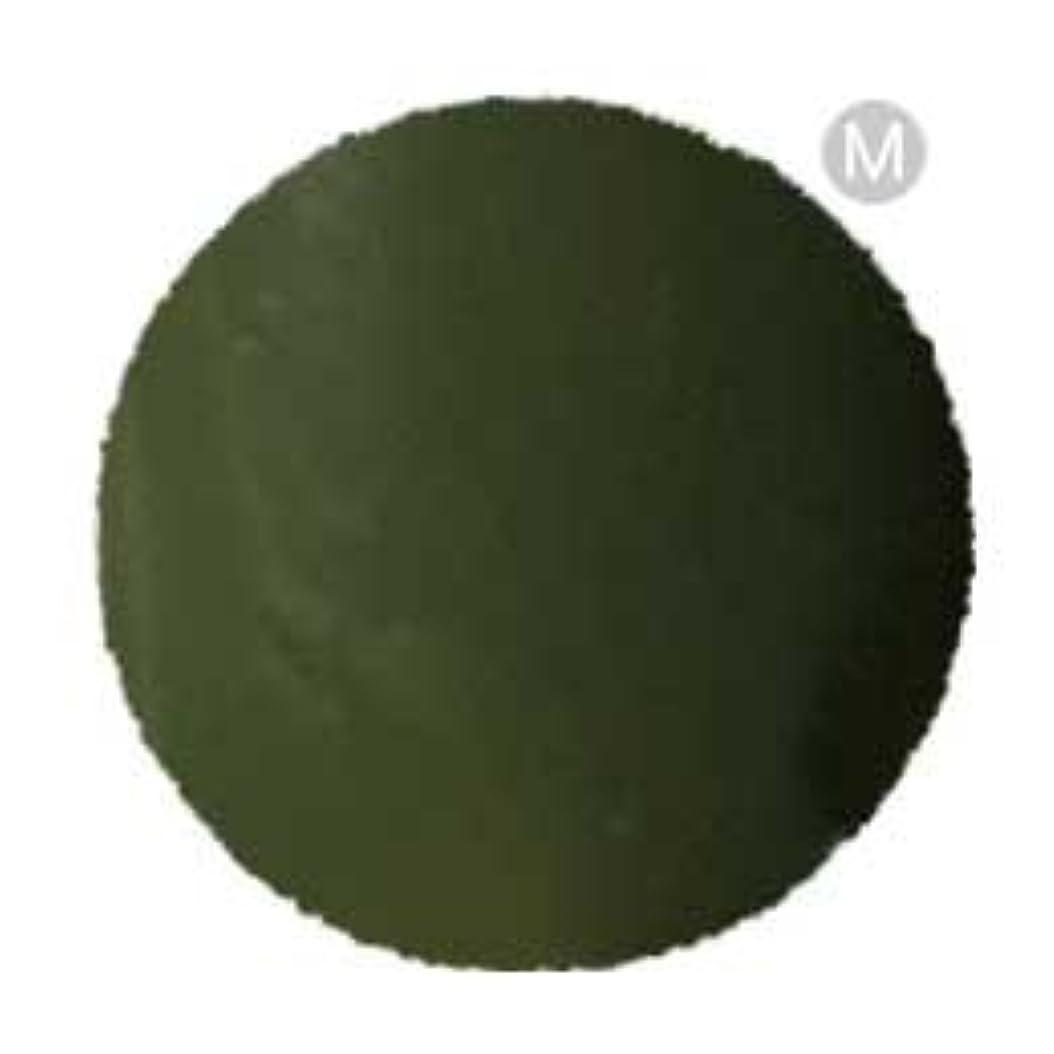コンチネンタルであること免疫するPalms Graceful ポリッシュジェル カラー P-37M カーキ