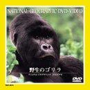 野生のゴリラ [DVD]