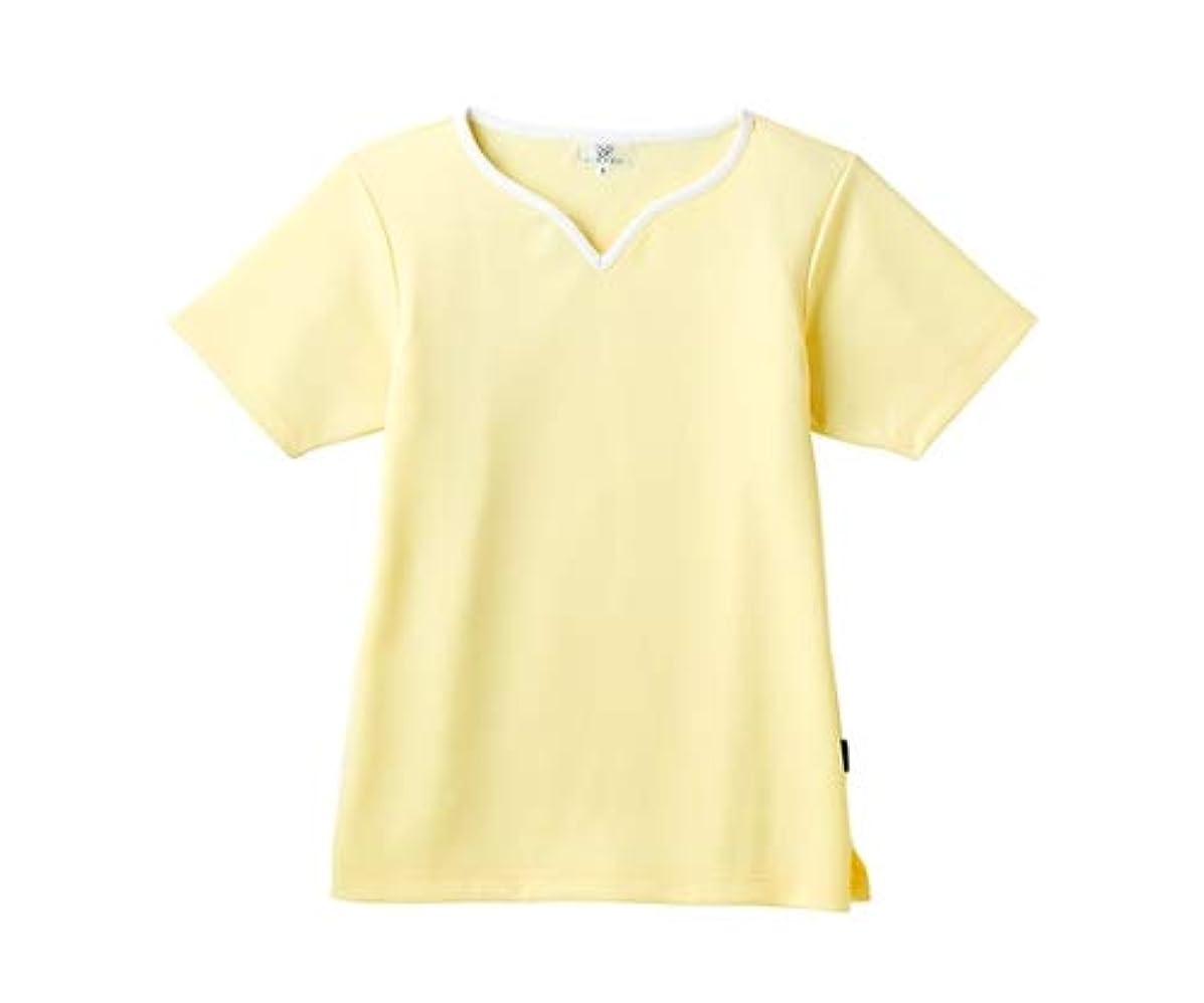 シーン露骨な代表トンボ/KIRAKU レディス入浴介助用シャツ CR161 L クリーム
