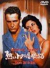熱いトタン屋根の猫[DVD]