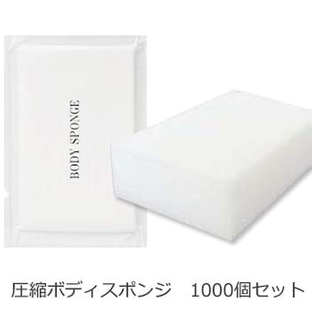 ぶら下がる塩辛い安西ボディスポンジ 海綿タイプ 厚み 30mm (1セット1000個入)1個当り11円税別