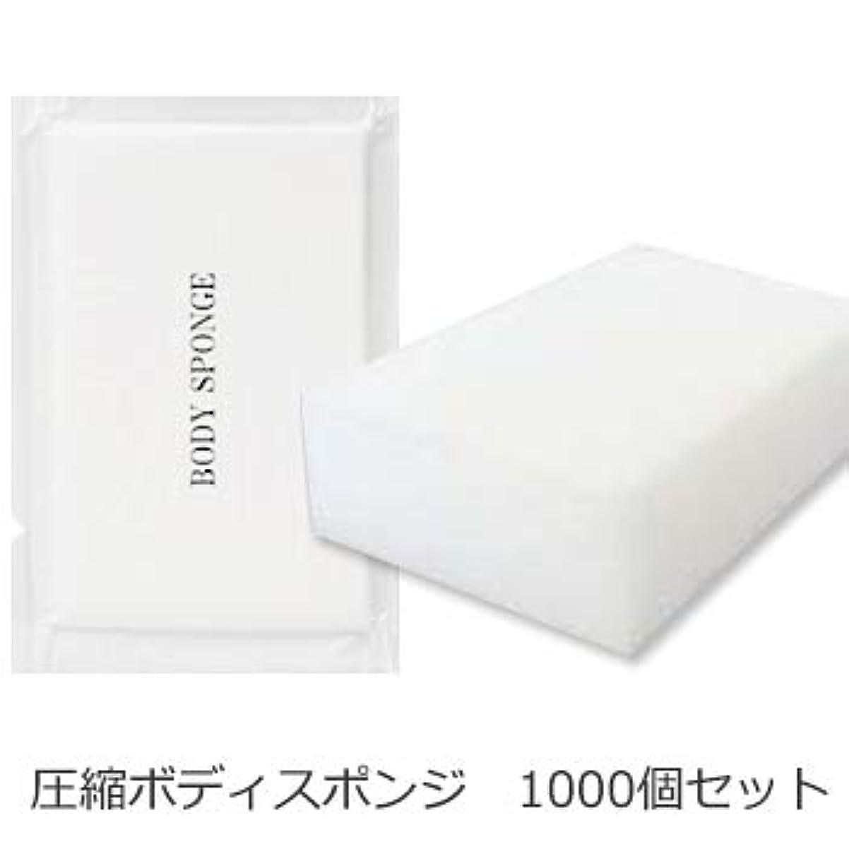 マニュアルピルファー払い戻しボディスポンジ 海綿タイプ 厚み 30mm (1セット1000個入)1個当り11円税別