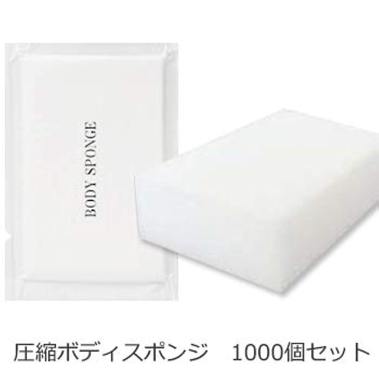 囚人下向き食料品店ボディスポンジ 海綿タイプ 厚み 30mm (1セット1000個入)1個当り11円税別