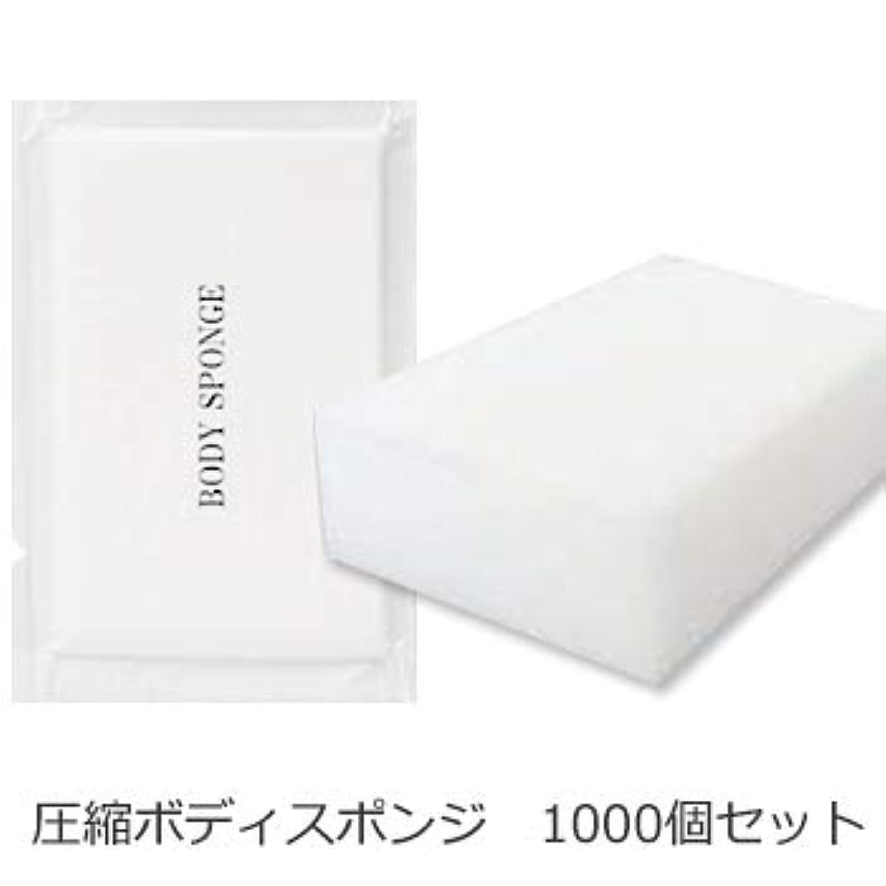 ケント製油所長くするボディスポンジ 海綿タイプ 厚み 30mm (1セット1000個入)1個当り11円税別