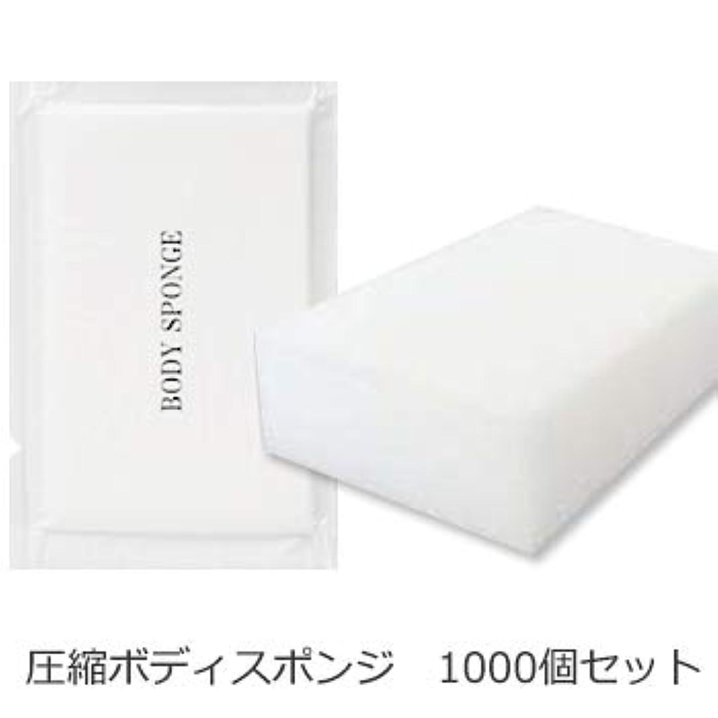 思い出す障害事務所ボディスポンジ 海綿タイプ 厚み 30mm (1セット1000個入)1個当り11円税別