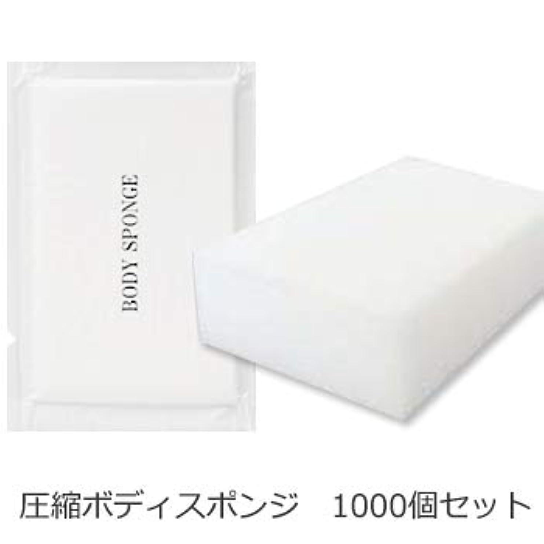 魔法拍車見通しボディスポンジ 海綿タイプ 厚み 30mm (1セット1000個入)1個当り11円税別