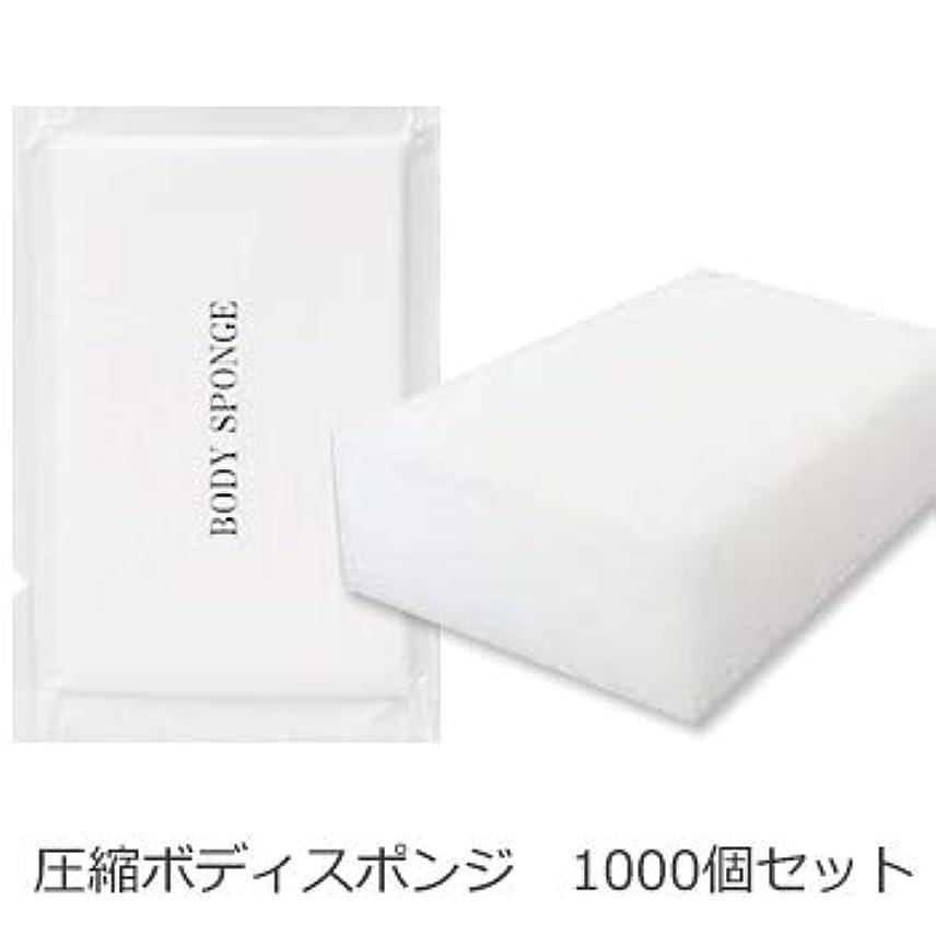 クラウドツイン雰囲気ボディスポンジ 海綿タイプ 厚み 30mm (1セット1000個入)1個当り11円税別