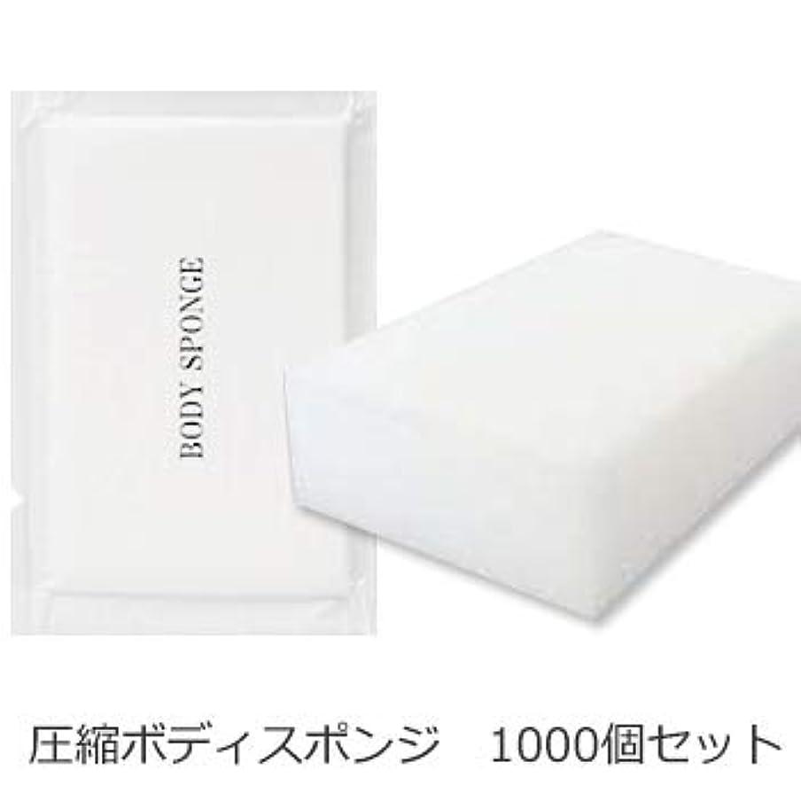 びっくりした東ティモールスーツケースボディスポンジ 海綿タイプ 厚み 30mm (1セット1000個入)1個当り11円税別