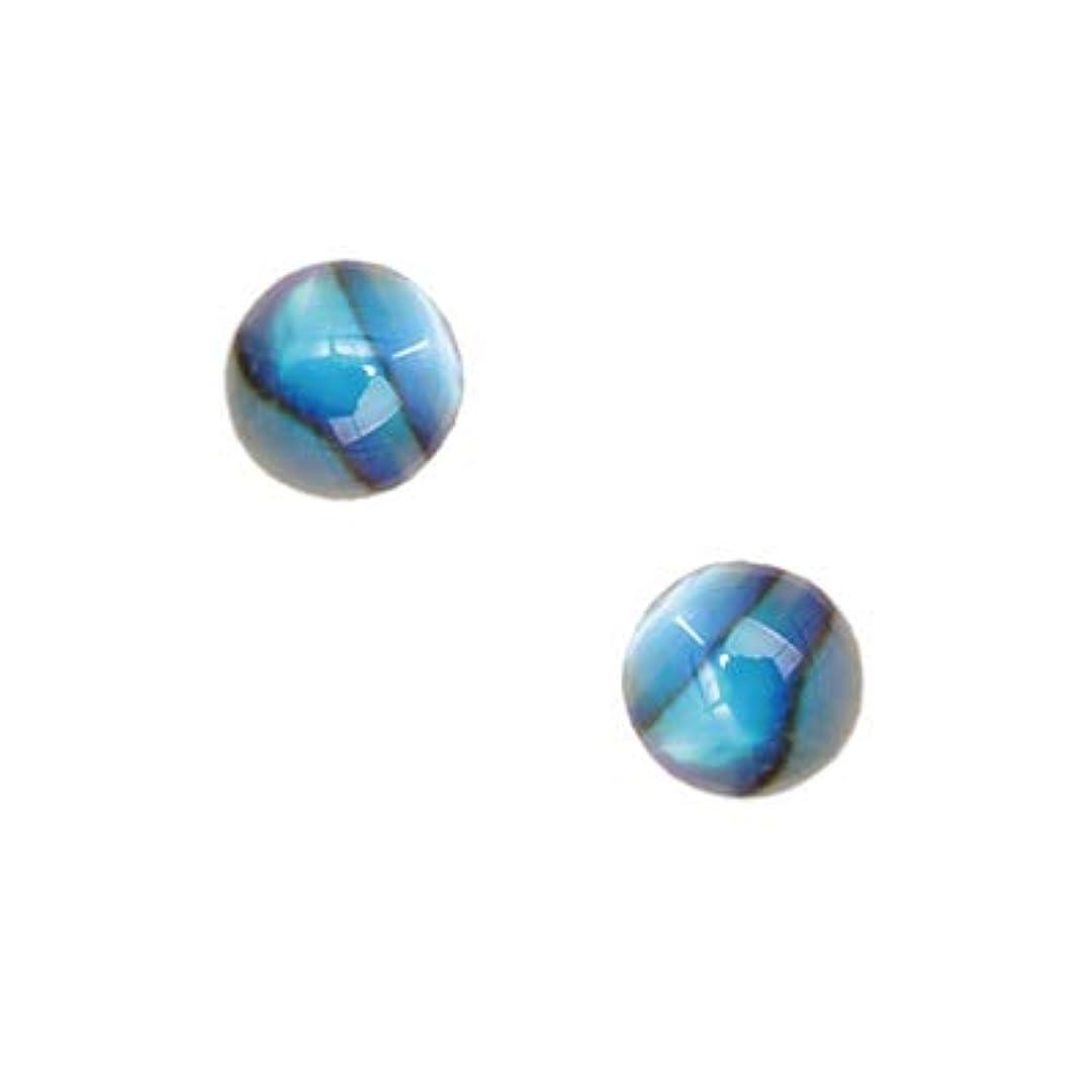 ゴミ熟達したピアニストSHAREYDVA シャレドワ シェルパーツ スモールラウンド ブルー 10P