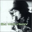 The Live Adventures of the Waterboys (2cds)