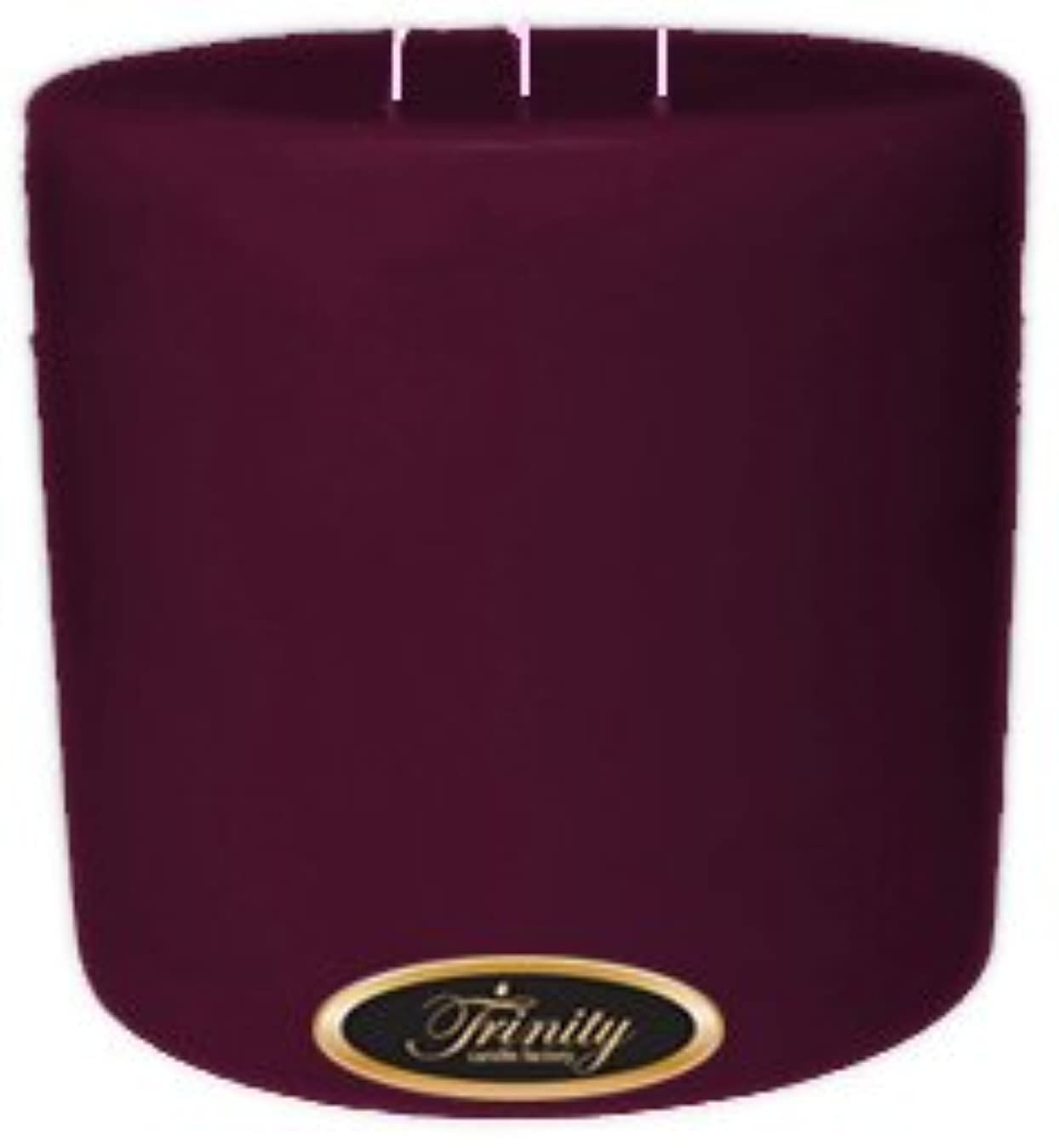 羨望主広々Trinity Candle工場 – Wisteria – Pillar Candle – 6 x 6