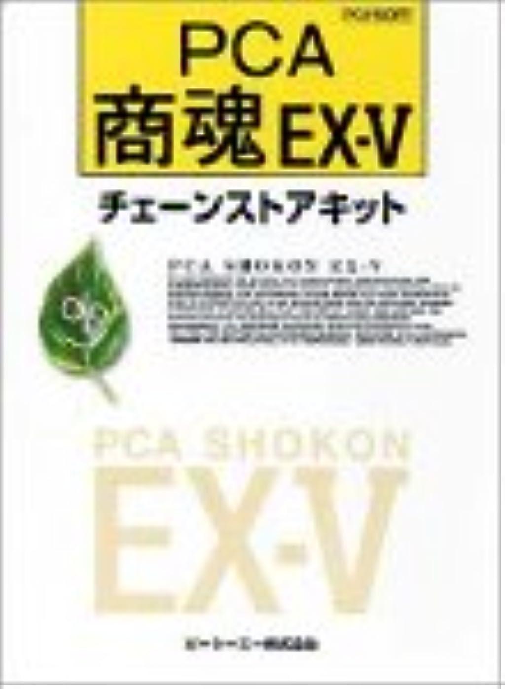 かもめ手錠稚魚PCA商魂EX-V/2000チェーンストアキット