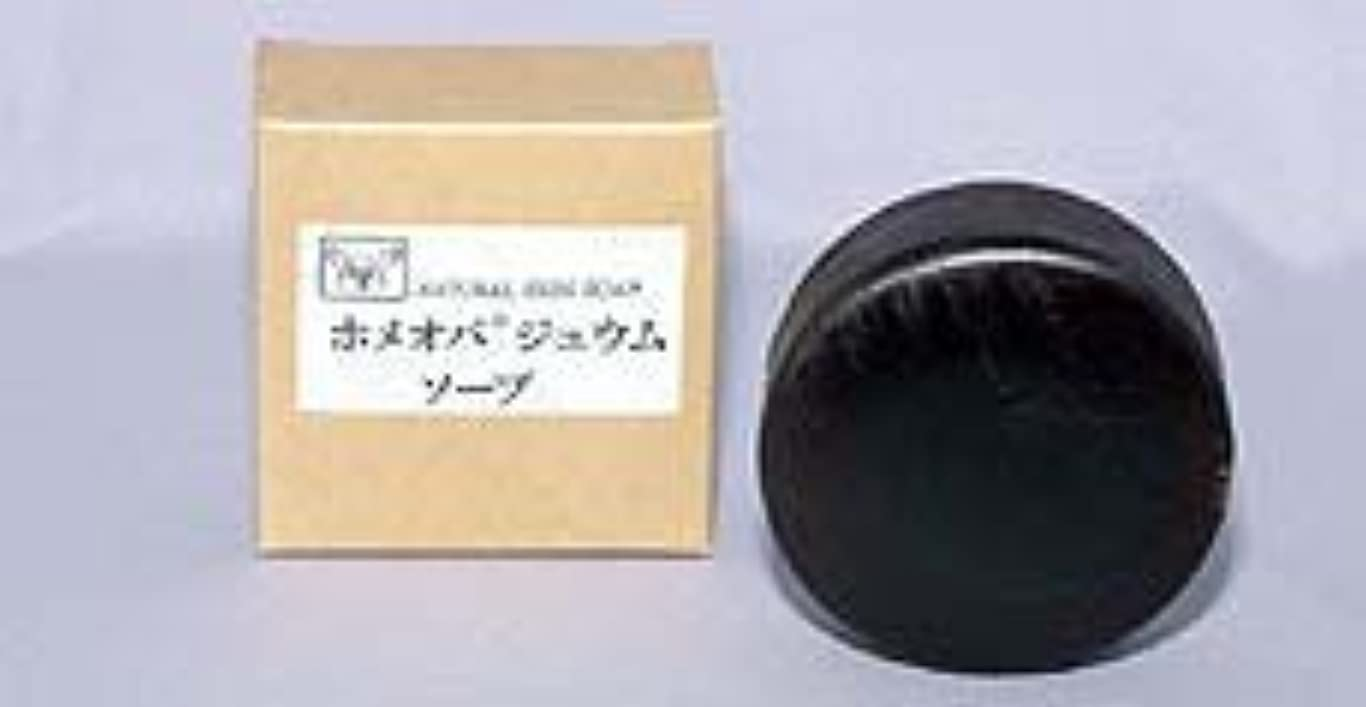 電信周術期帝国ホメオパジュウムソープ 100g×(6セット)