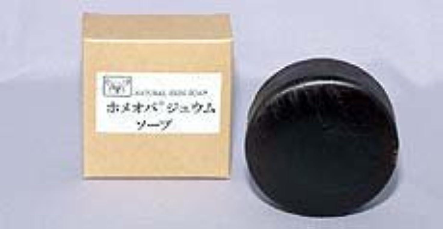 敵旋回案件ホメオパジュウムソープ 100g×(3セット)