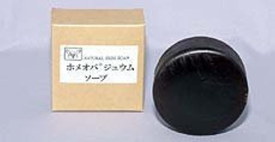 スピンベーシックリルホメオパジュウムソープ 100g×(6セット)