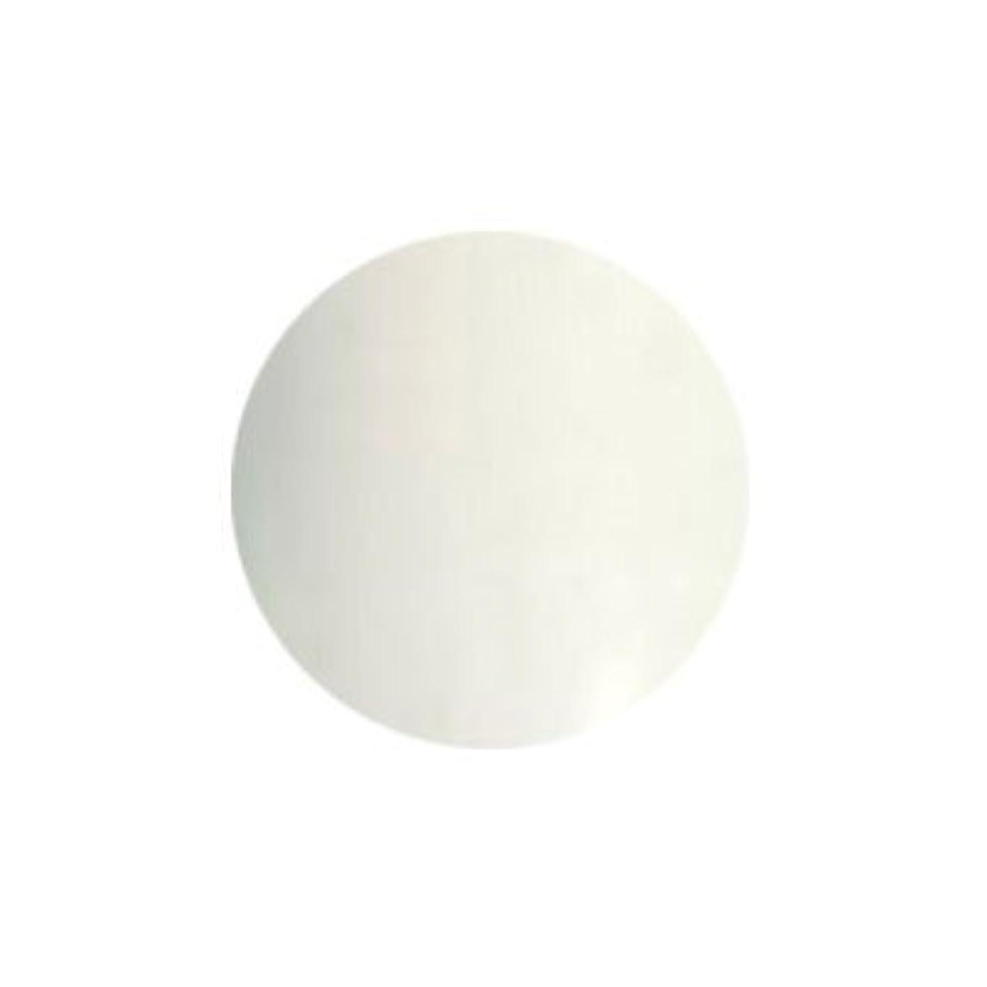 発疹改修するパンフレットプリジェル カラーEX フレンチホワイト PG-CEW51 3g