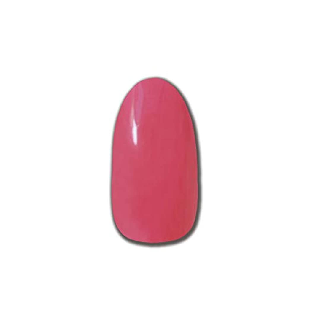 鮮やかな発表する献身T-GEL COLLECTION カラージェル D198 ローズピンク 4ml