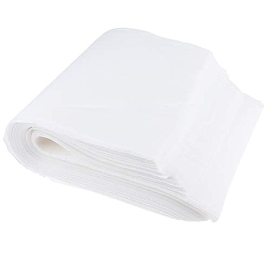 薄汚い産地パラメータPerfeclan 使い捨てタオル ぞうきん ボディタオル エステ用 業務用 美容用 27x56cm 約190枚入り