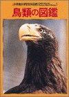 鳥類の図鑑―Wide color (小学館の学習百科図鑑 (4))