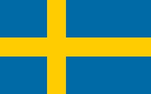 世界の 国旗 スポーツ 観戦 応援 各国 料理 日本 アメリカ イギリス フランス イタリア etc 90㎝×150㎝ (スエーデン)