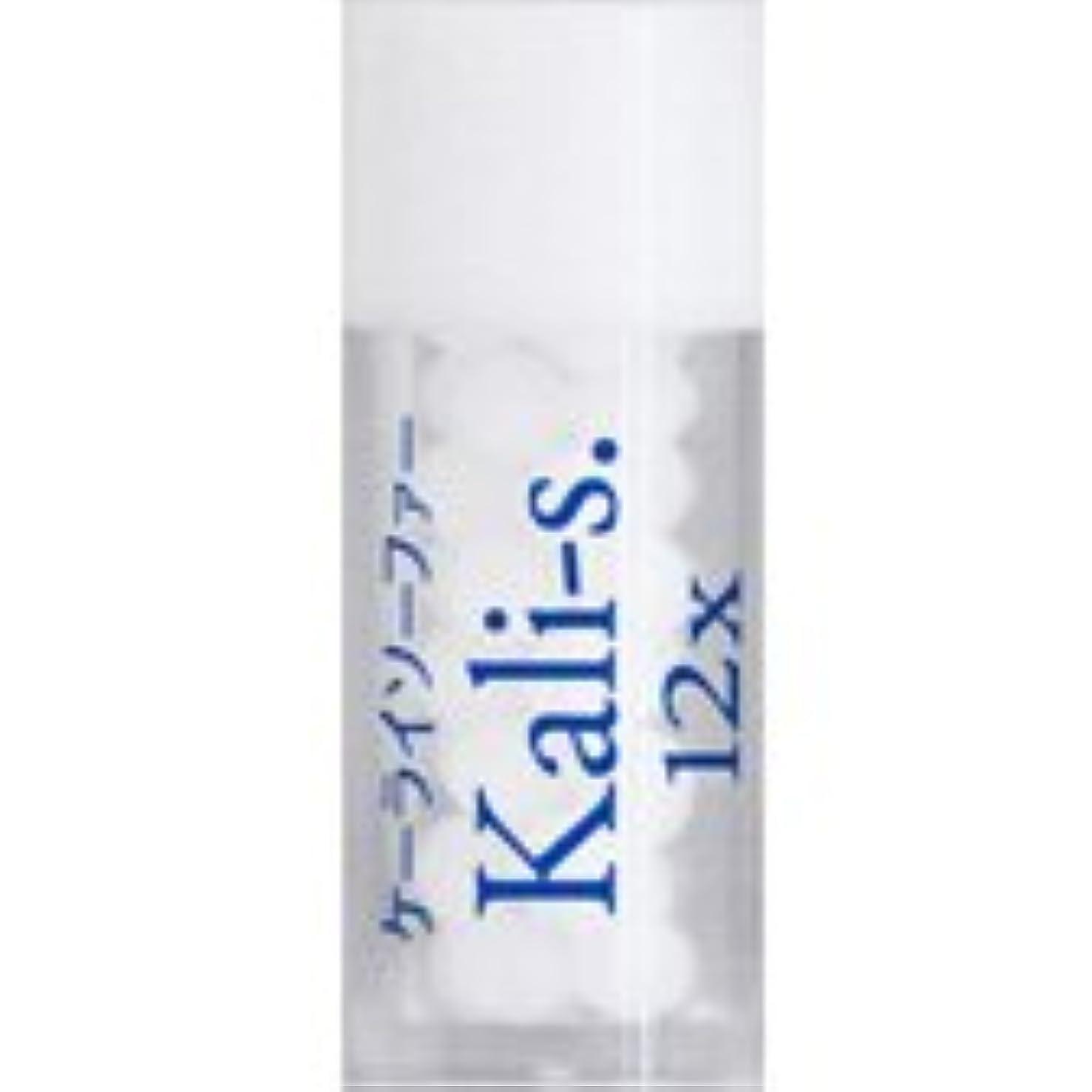 細菌後ろに繊毛36バイタルエレメントキット 対応 各種 (7)Kali-s.12X ケーライソーファー)