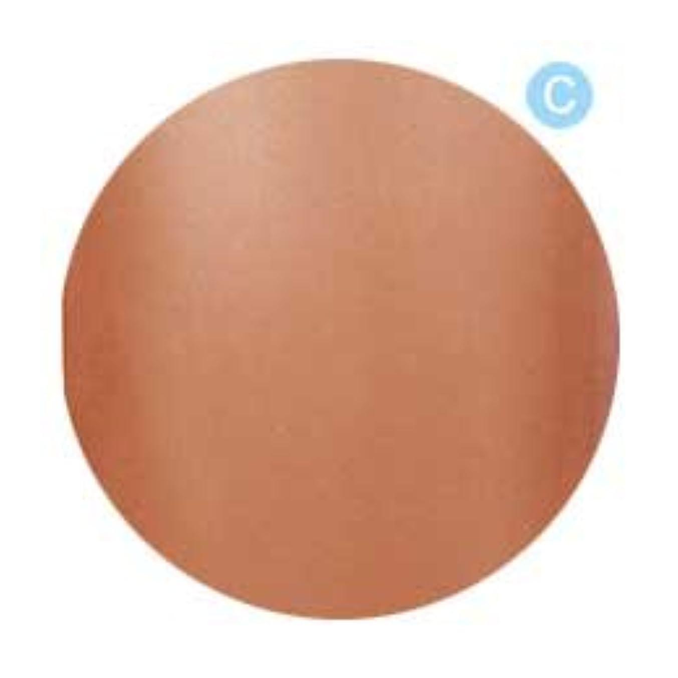 不振ミニチュア砂のPalms Graceful カラージェル 3g 021 クリアブラウン