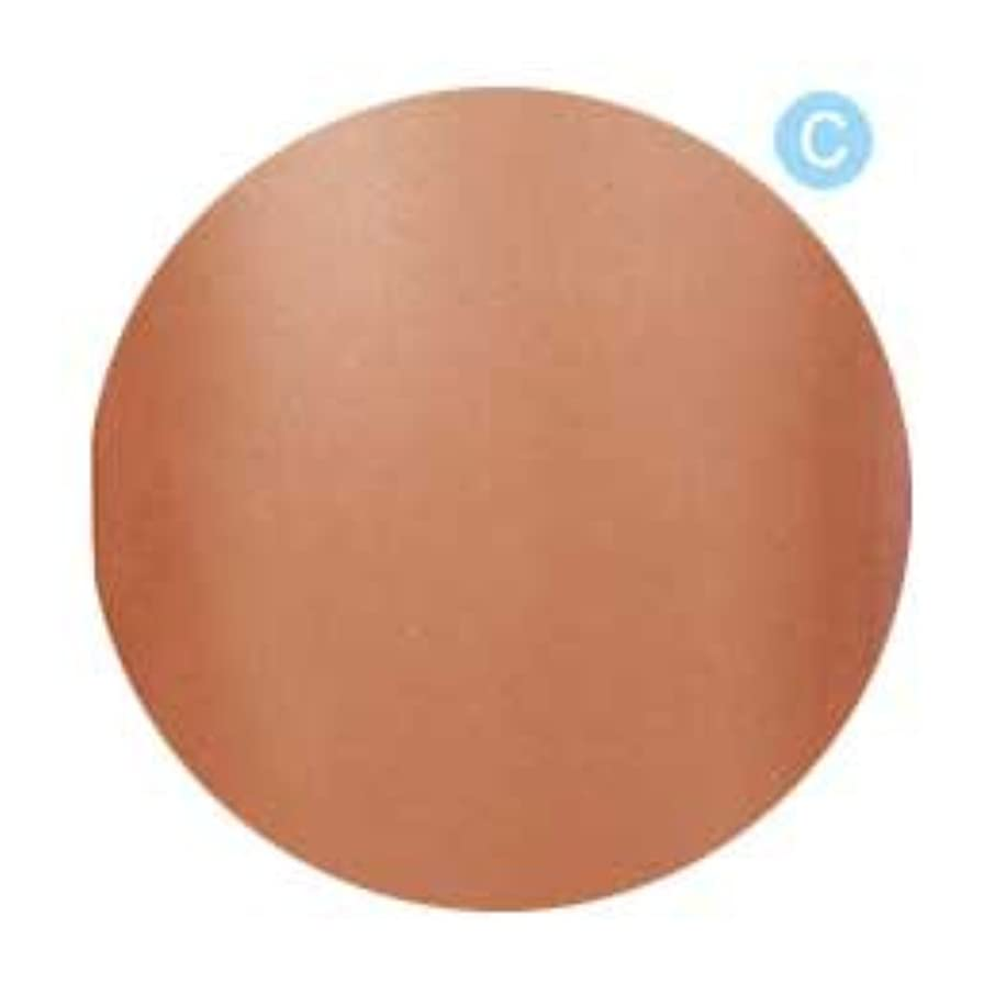 超高層ビル寛大な温かいPalms Graceful カラージェル 3g 021 クリアブラウン