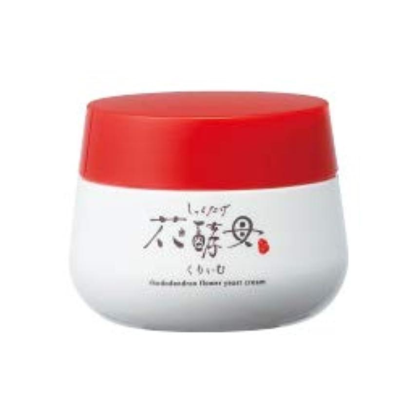 豆腐の盛田屋 豆花水 しゃくなげ花酵母くりぃむ 30g