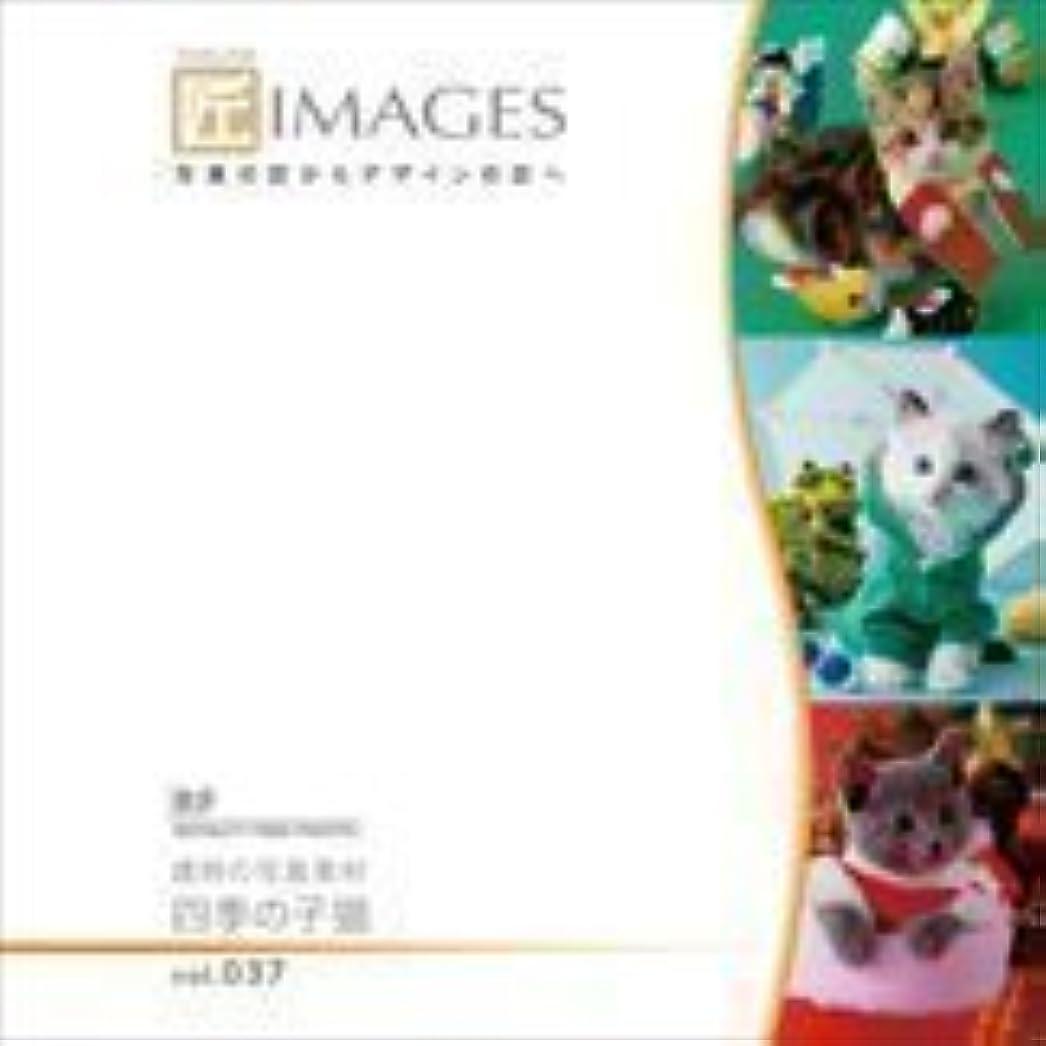 変わる軽食ジャンル匠IMAGES Vol.037 歳時の写真素材 四季の子猫