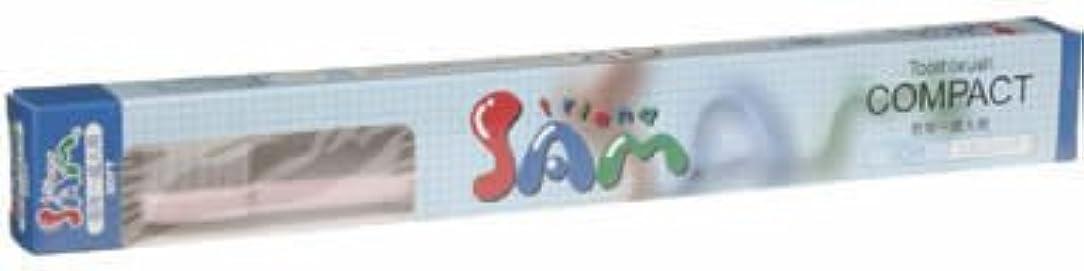 道徳害虫刺繍サムハブラシ コンパクト ソフト