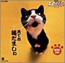 NHK天才てれびくんワイド~天てれ猫だましぃ~