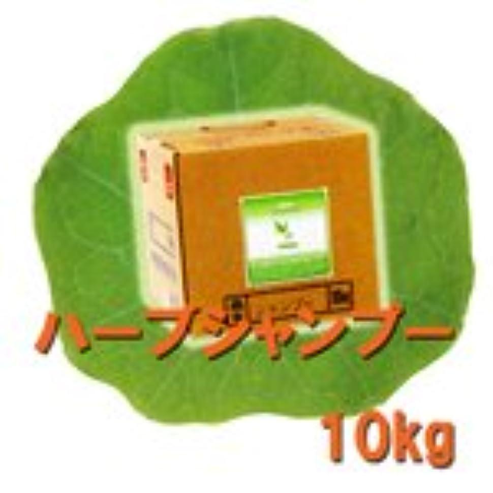 処理する実際に削る中央有機化学 ハーブシリーズ ハーブシャンプー 10kg