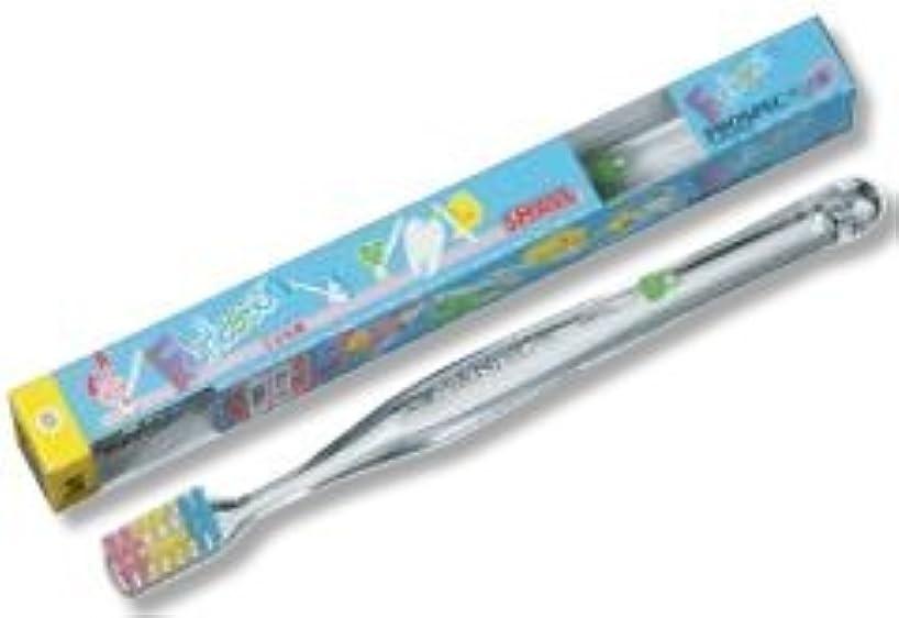 命令的静かな起こりやすいプロスペック プラス フォーレッスン 歯ブラシ 20本入 スモール