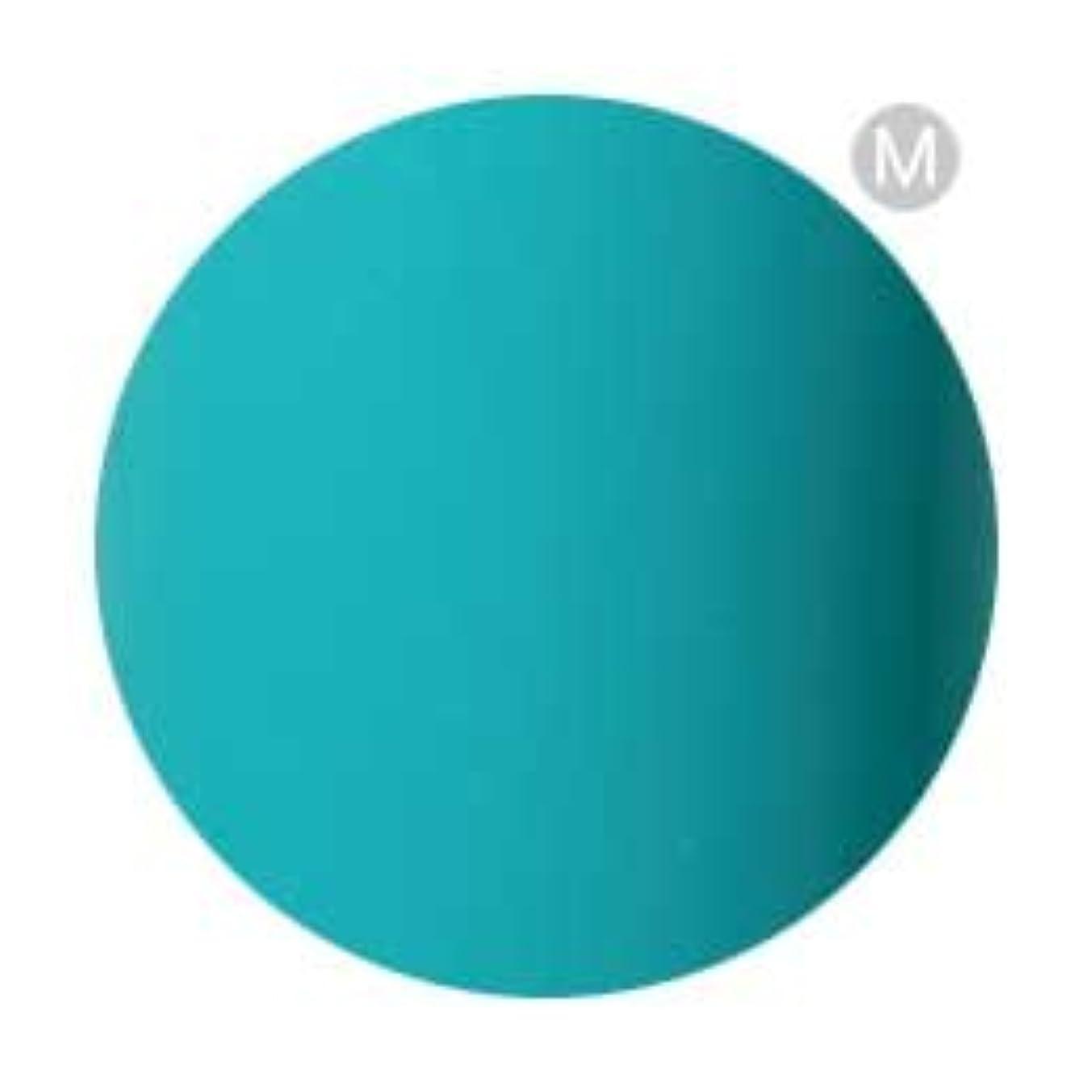 テラスレインコートキリンPalms Graceful カラージェル 3g 078 ターコイズグリーン