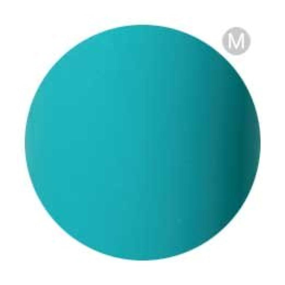 人に関する限り剥離ブリッジPalms Graceful カラージェル 3g 078 ターコイズグリーン