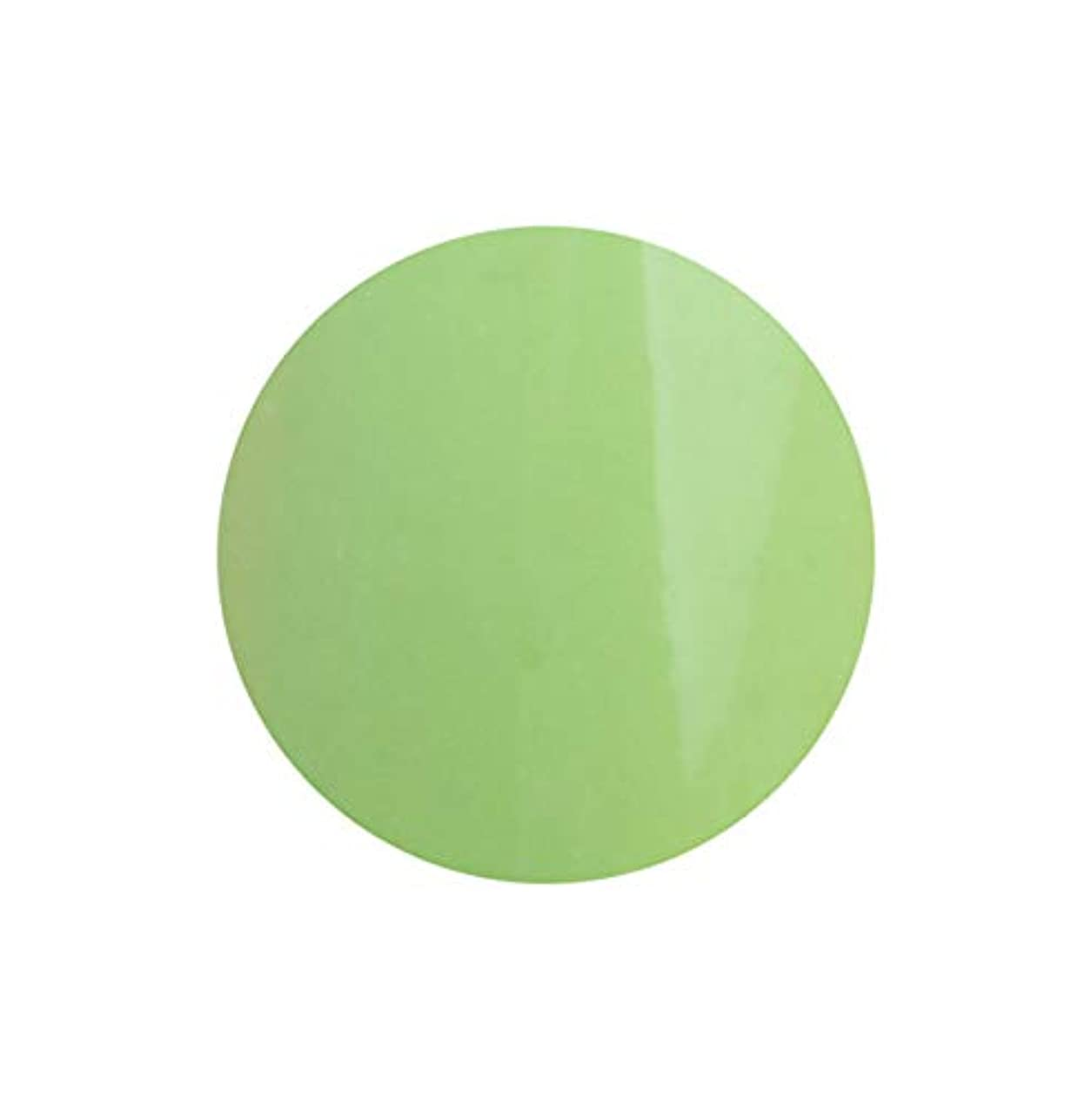 バーベキュー汚染する失望させるSHAREYDVA シャレドワ+ ネイルカラー No.39 パステルグリーン
