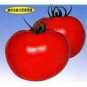 秀美[トマト]【タネ】小袋