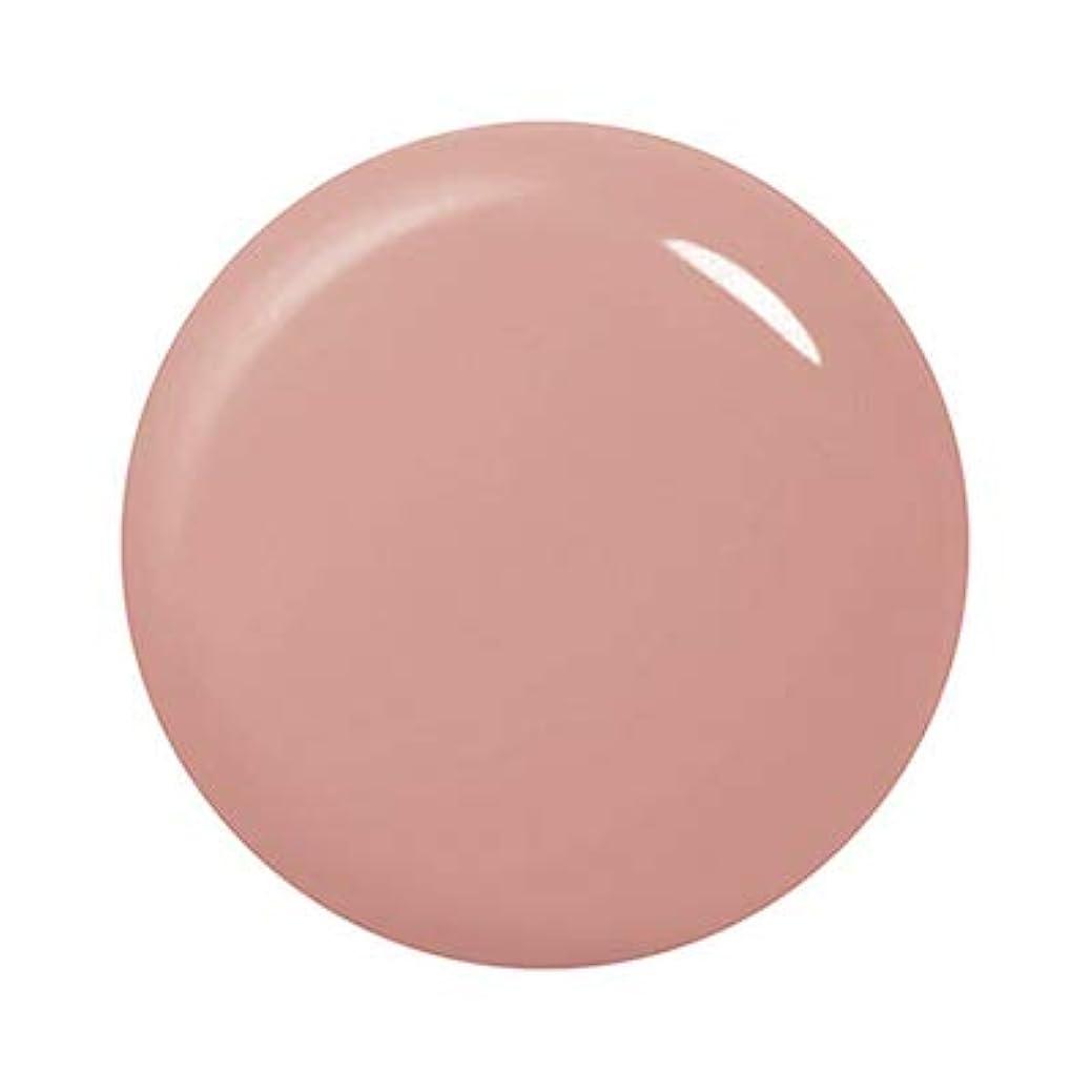 色合いシルクまろやかなパラジェル シースルーカラージェル ST13 シースルーセピア(神宮麻実プロデュース)