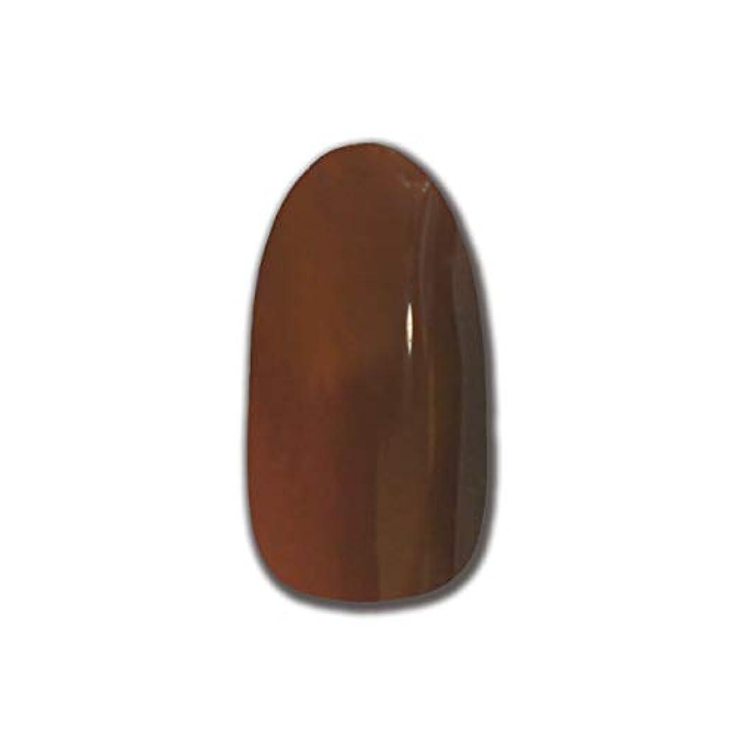 レッスン裁量無限大T-GEL COLLECTION カラージェル D175 スケルトンダークブラウン 4ml