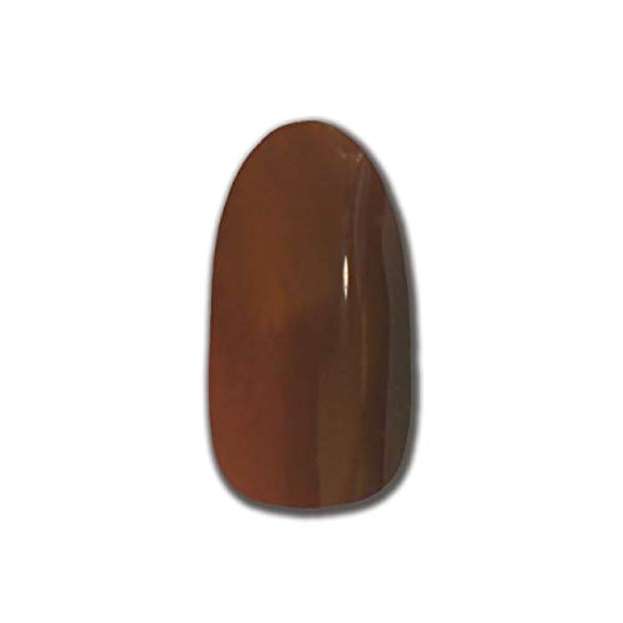 安価な非行毎日T-GEL COLLECTION カラージェル D175 スケルトンダークブラウン 4ml