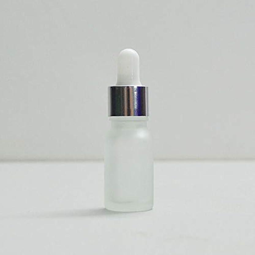ノートベックス毎日FidgetGear 液体ドロップピペットで10個透明曇らされた空ボトルガラス 10ml