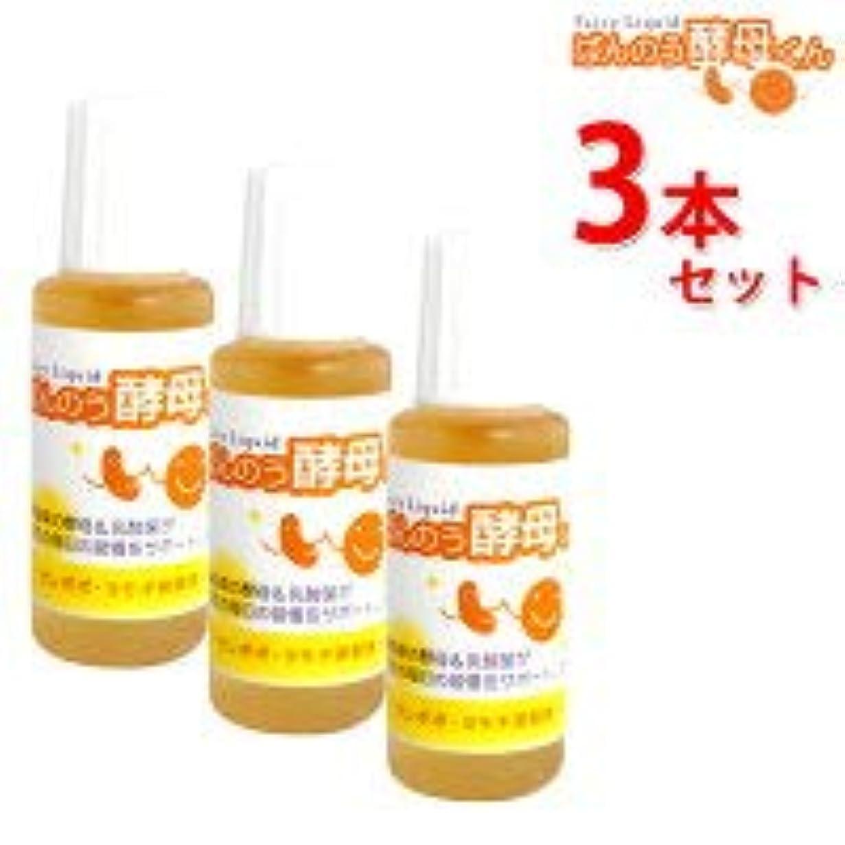 アーデンモア ばんのう酵母くん 3本セット