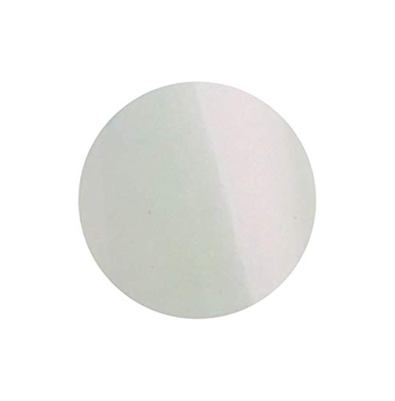 安らぎ麻痺させる相対的SHAREYDVA シャレドワ+ ネイルカラー No.27 オーロラ